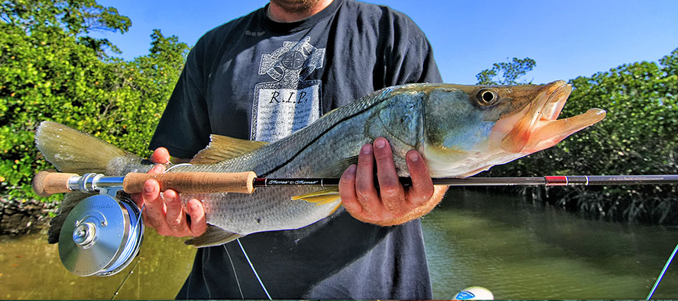 Snook Fishing in the Florida Keys