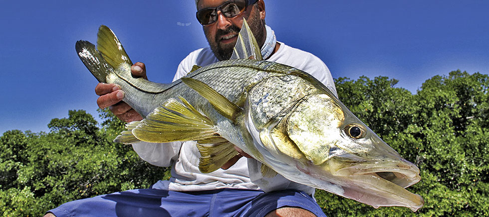 Backcountry fly fishing and flats fishing with capt paul for Snook fishing florida